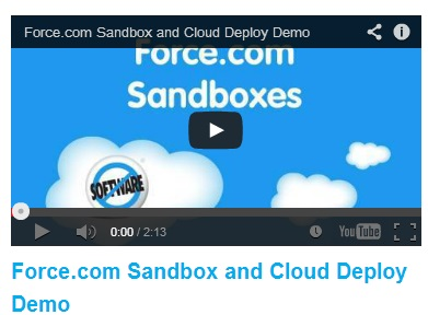 Salesforce.com Demo Videos